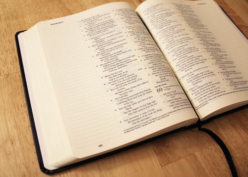 ESV Journaling Bible, layout