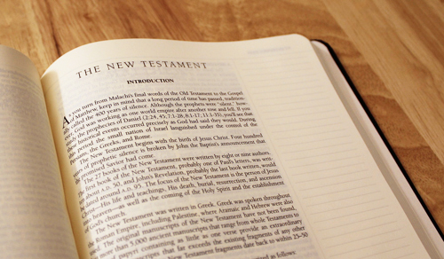 ESV Journaling Bible, summary of each books